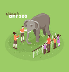 elephant zoo isometric background vector image