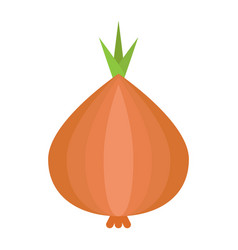 Onion flat icon vegetable and diet vector