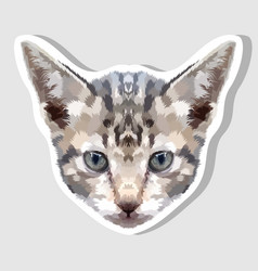 sticker kitten head on geometric art style vector image
