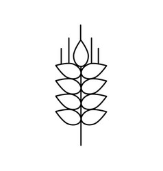 wheat sprig line icon sign vector image vector image