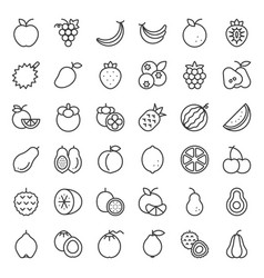cute fruit outline icon set vector image vector image