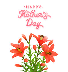 mothers day card with red lilies with water drops vector image