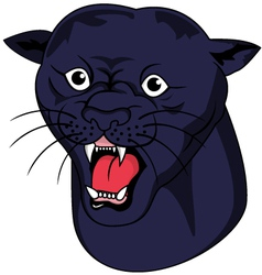 nice panther head vector image