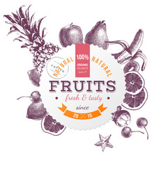 round emblem with hand drawn fruits vector image