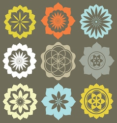 Floral esoteric elements vector image