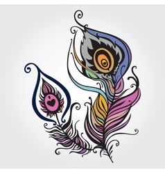 Beautiful peacock feather vector image