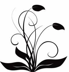 floral flourish vector image
