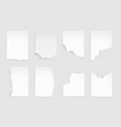 notebook sheets with torn edge ragged blank pages vector image