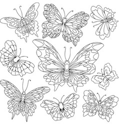 set of different butterflies with beautiful wings vector image