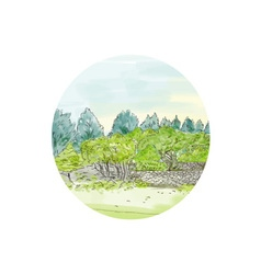 Trees in Park with Cornwall Oval Watercolor vector image