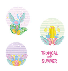 Tropical and summer vector