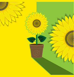 yellow-green plant background flower sunflower vector image