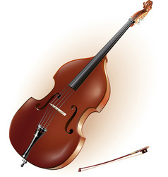 Classical contrabass vector image