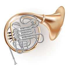 Classical French horn vector image vector image