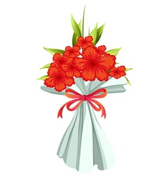 A boquet of red flowers vector