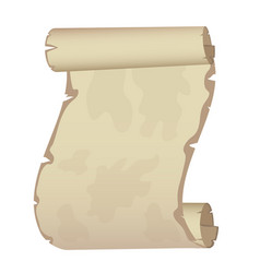 ancient scroll on white background vector image