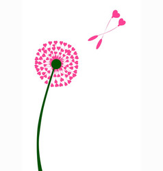 Dandelion heart seed lovers vector