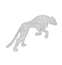 drawn jaguar leopard wild cat panther doodle vector image