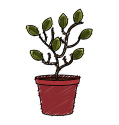 tree plant in pot vector image