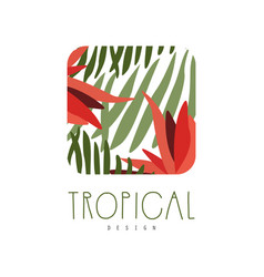 Tropical logo template design square badge with vector