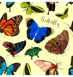 Butterflies set pattern vector image