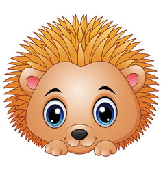 Cute baby hedgehog isolated on a white background vector