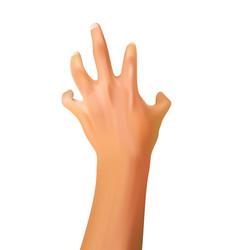 hand gesture reach something vector image