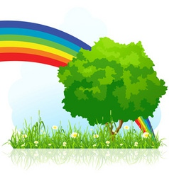 isolated green tree with rainbow vector image