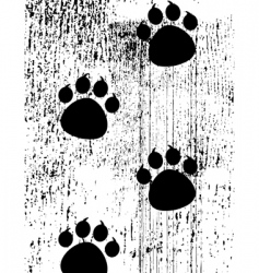 Paw prints on grunge background vector