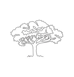 single one line drawing exotic and beauty vector image