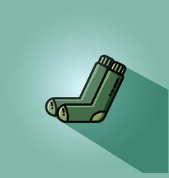 socks flat vector image