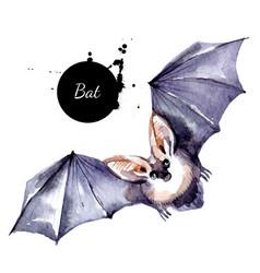 Watercolor bat vampire vactor painted isolated vector