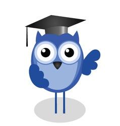 Owl teacher vector