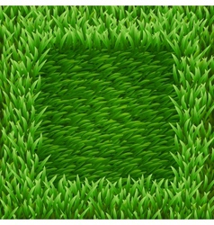 Square on green grass vector image vector image