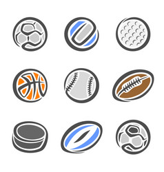 sports equipment ball vector image vector image