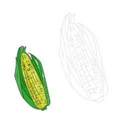 Educational game connect dots draw corn vector