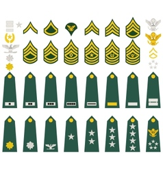 Insignia of the us army vector