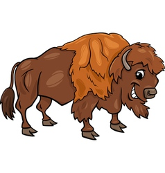 Bison american buffalo cartoon vector