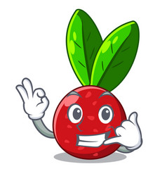 Call me fruit yangmei isolated on the mascot vector