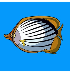 cartoon striped fish with yellow fins vector image
