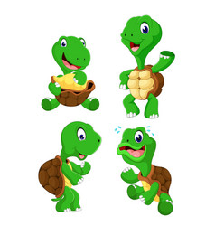 Collection of the green tortoise vector