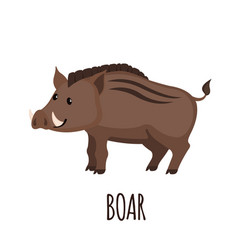 Cute wild boar in flat style vector