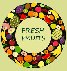 different kinds of fruits vector image