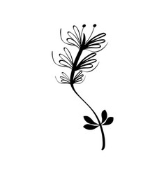 Rustic branch plant decoration vector