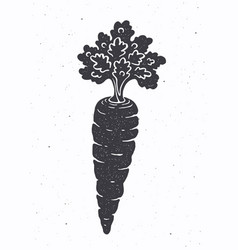 silhouette carrot with a stem leaves vector image