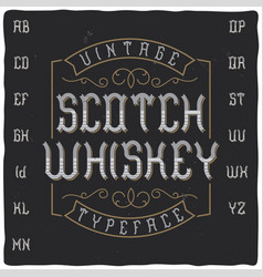 vintage label typeface called scotch whiskey vector image