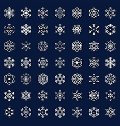 Winter snowflakes icons vector image