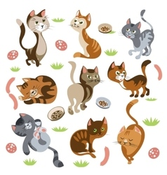 Funny Cats Characters Set vector image