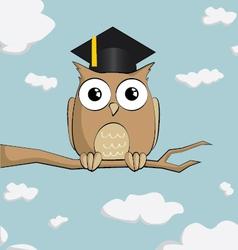 graduated cute cartoon owl vector image vector image