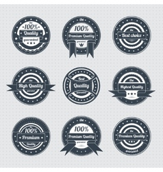 Collection of Premium Quality Labels vector image